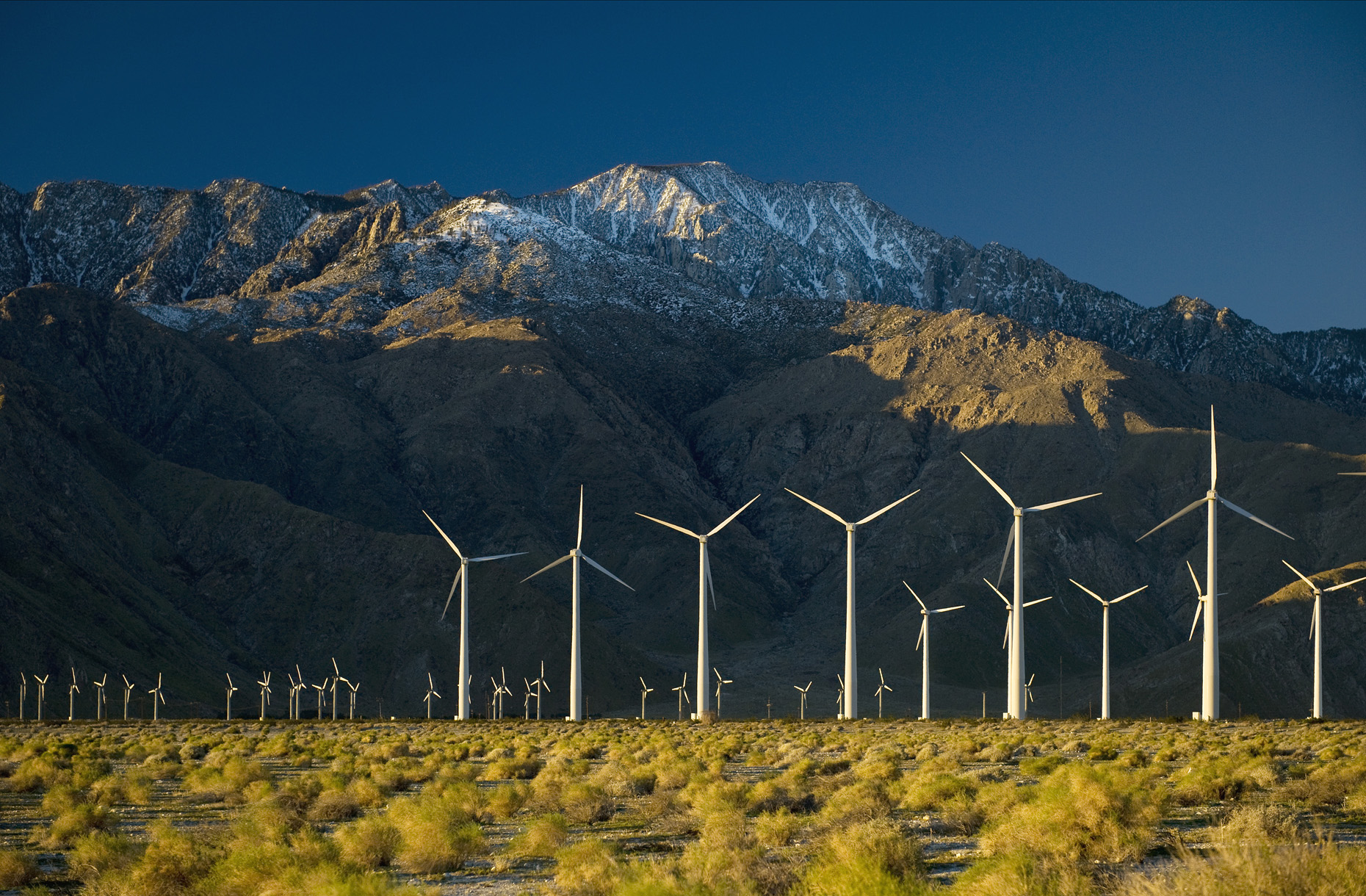 Palm Springs Wind Machines.jpg